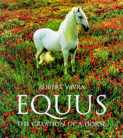 9783822876213: Equus: The Creation of a Horse (Evergreens)