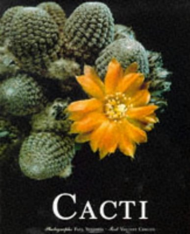 9783822877609: Cacti (Evergreen Series)