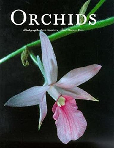 9783822877623: Orchids (Evergreen Series)