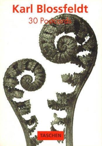 PostcardBook, Bd.19, Karl Blossfeldt PostcardBooks