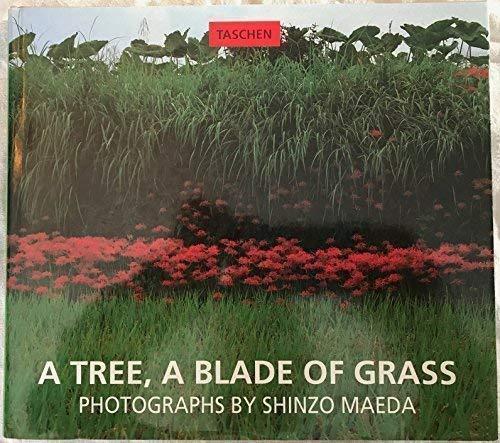 9783822896556: Tree, a Blade of Grass (Evergreen Series)