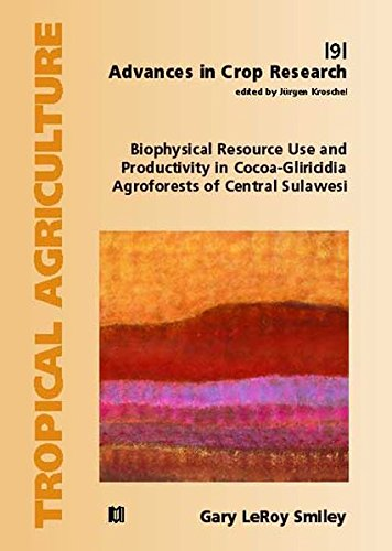 9783823614883: Biophysical Resource Use and Productivity in Cocoa-Gliricidia Agroforests of Central Sulawesi