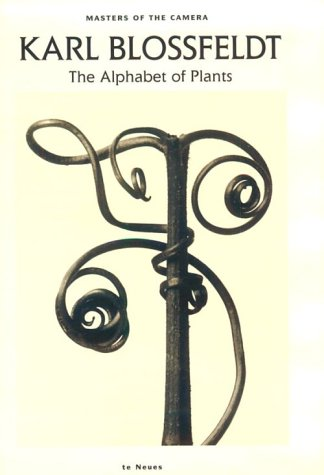 9783823803645: Karl Blossfeldt: The Alphabet of Plants