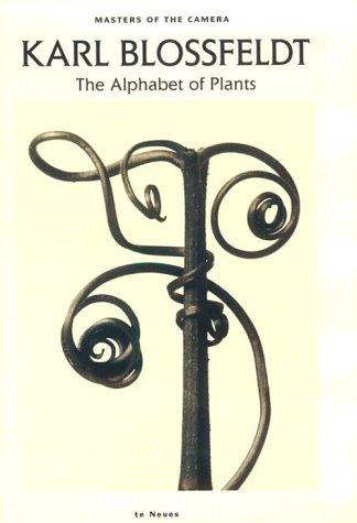 Karl Blossfeldt : The Alphabet of Plants: Karl Blossfeldt