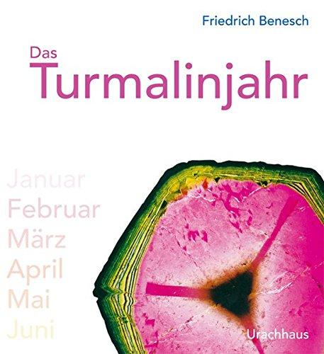 Das Turmalinjahr Benesch, Friedrich
