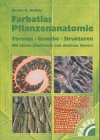 9783826333798: Farbatlas Pflanzenanatomie. Formen, Gewebe ...