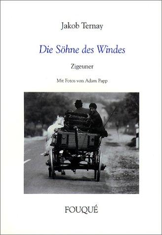 9783826745799: Die Söhne des Windes.