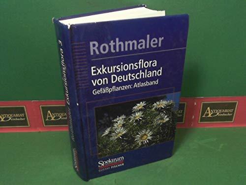 9783827406590: Rothmaler, Exkursionsflora in Deutschland Bd.3 9. A.: Gefasspflanzen - Atlasband