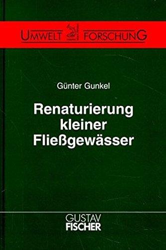 9783827406736: Renaturierung Kleiner Flie��gew�sser