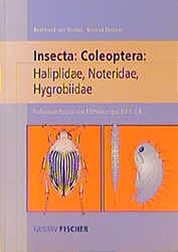 9783827407726: Süßwasserfauna von Mitteleuropa, Bd. 20/2-4: Coleoptera: Haliplidae, Noteridae, Hygrobiidae (German Edition)