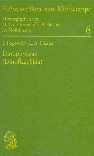 9783827408150: Süßwasserflora von Mitteleuropa, Bd. 6: Dinophyceae: Dinoflagellida (German Edition)