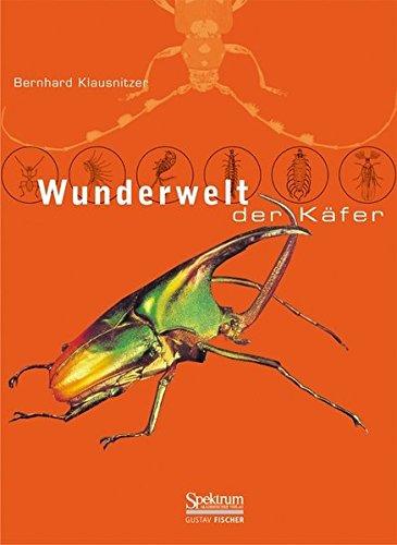 9783827411044: Wunderwelt der Käfer (German Edition)