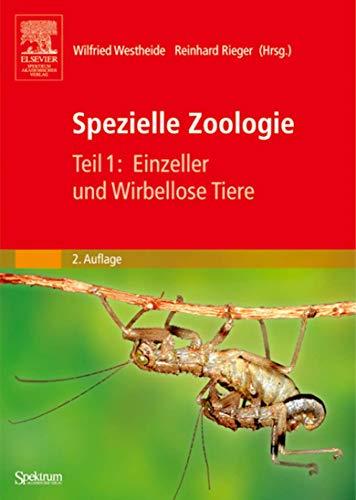 9783827415752: Spezielle Zoologie: Einzeller Und Wirbellose Tiere (Sav Biologie)