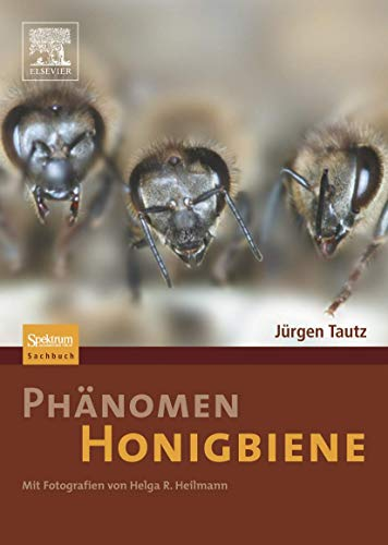 9783827418456: Phänomen Honigbiene (German Edition)