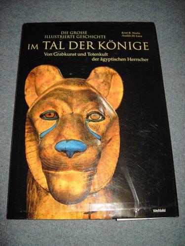 9783828905863: Im Tal der Könige. Von Grabkunst und Totenkult der ägyptischen Herrscher.