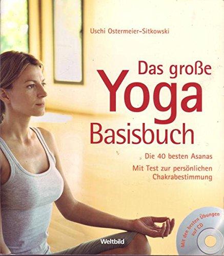 9783828922501: Das große Yoga Basisbuch