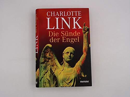 9783828976207: Die Sünde der Engel,