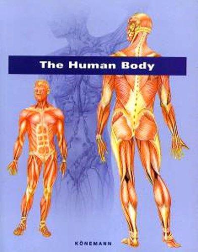 The Human Body: Asensio Cerver, Francisco