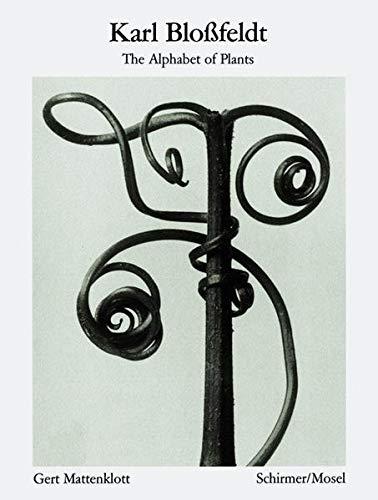9783829603041: Karl Blossfeldt: The Alphabet of Plants