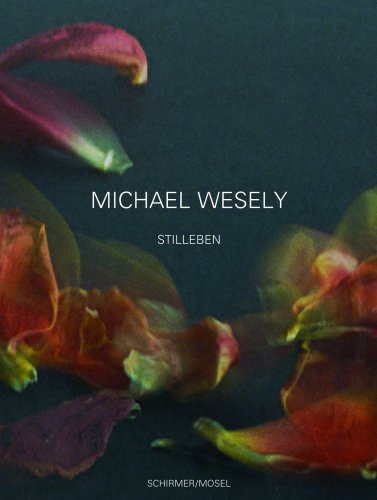 9783829603058: Michael Wesely: Still Lifes 2001-2007