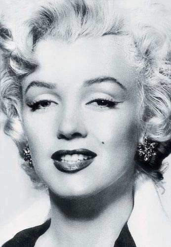 9783829603126: Silver Marilyn - Marilyn Monroe and the camera /anglais