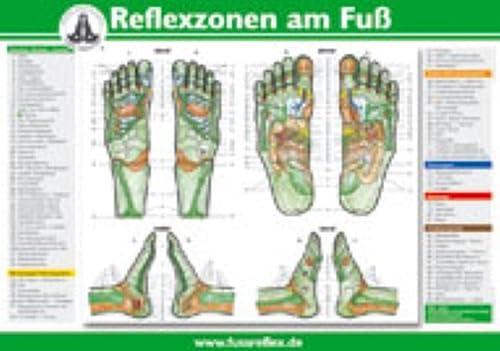 9783830474654: Die Reflexzonen der Füße (A5)