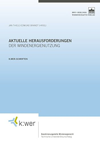 Aktuelle Herausforderungen der Windenergienutzung: Jan Thiele