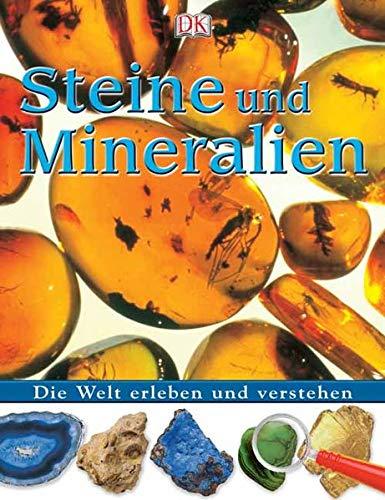 9783831005666: Steine und Mineralien: Die Welt erleben und verstehen