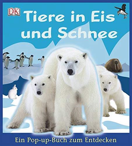 Tiere in Eis und Schnee: mit 6 großen Pop-up-Szenerien