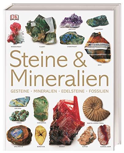 9783831014699: Steine & Mineralien: Gesteine, Mineralien, Edelsteine, Fossilien