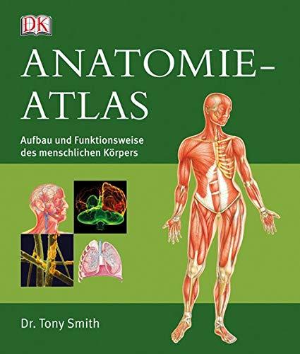 9783831018581: Anatomie-Atlas: Aufbau und Funktionsweise des ...