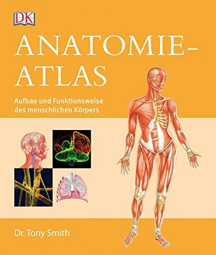 9783831029051: Smith, T: Anatomie-Atlas