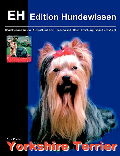 Yorkshire Terrier: Dirk Glebe