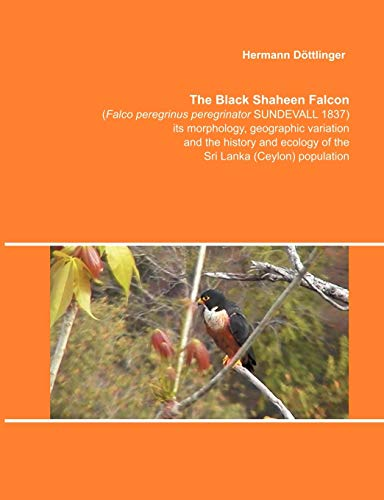 9783831136261: The Black Shaheen Falcon (Falco peregrinus peregrinator SUNDEVALL 1837), its morphology, geographic (German Edition)