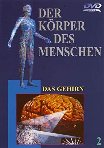 9783831287963: Der Körper des Menschen - 02 - Das Gehirn: - Keine Info - [Alemania] [DVD]