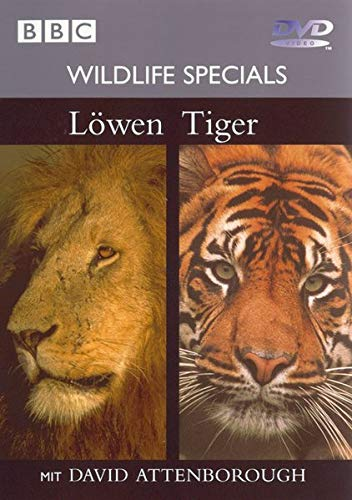 9783831289882: Löwen, Tiger, 1 DVD-Video