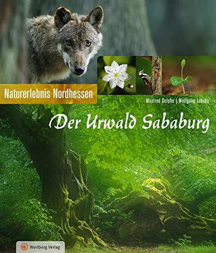 Der Urwald Sababurg: Naturerlebnis Nordhessen (Farbbildband) [Hardcover] Manfred Delpho and Wolfgang Lübcke - Manfred Delpho, Wolfgang Lübcke