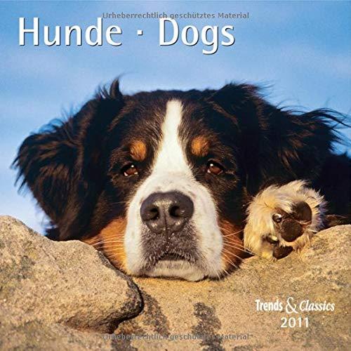 9783832015053: Hunde 2011 Trends & Classics Kalender