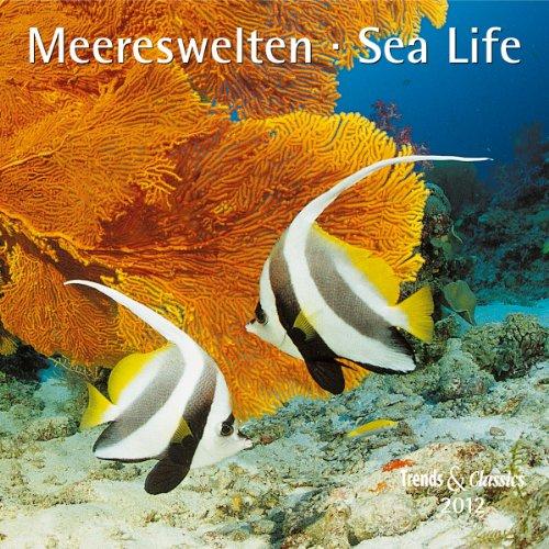 9783832019198: Meereswelten 2012. Trends & Classics