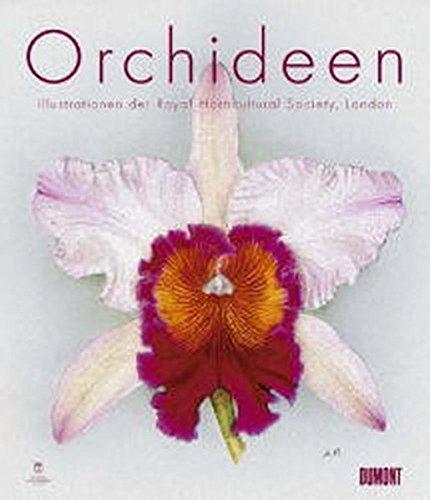9783832020002: Orchideen