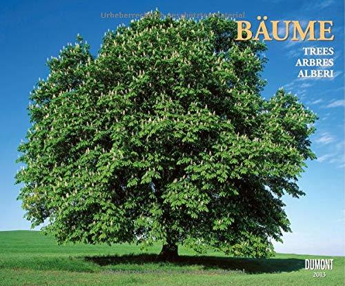 9783832021238: Bäume 2013
