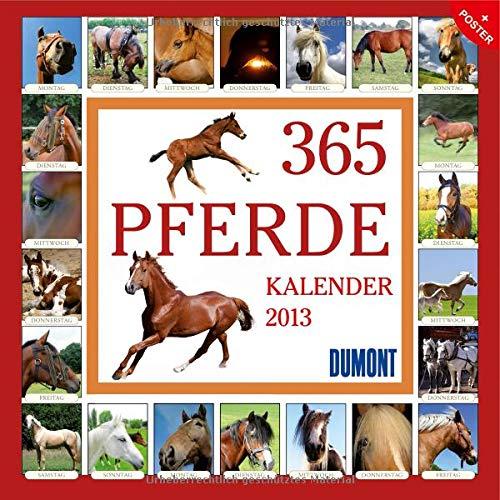 9783832022174: 365 Pferde 2013. Brosch�renkalender
