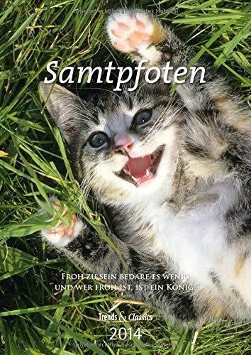 9783832024109: Samtpfoten 2014. Trends & Classics