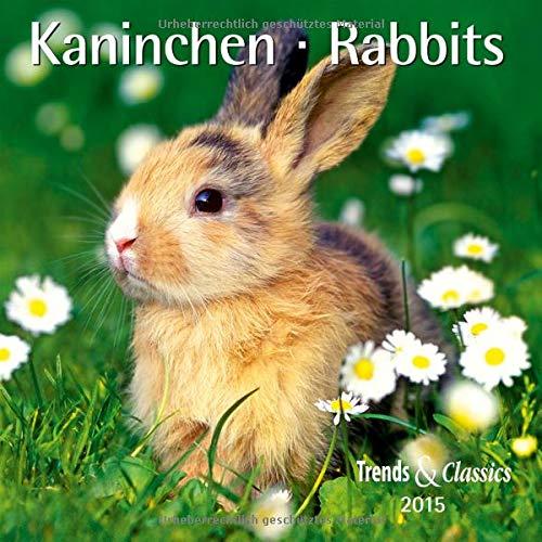 9783832026707: Kaninchen 2015 - Trends & Classics Kalender