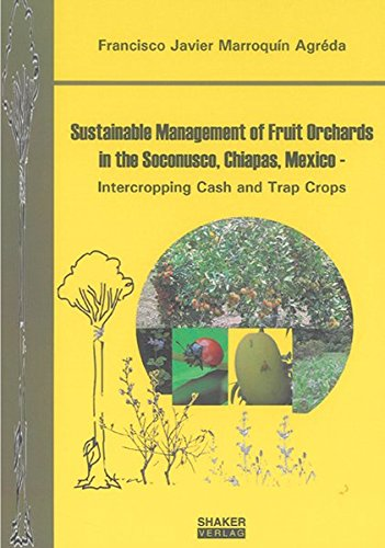 9783832273002: Sustainable Management of Fruit Orchards in the Soconusco, Chiapas, Mexico - Intercropping Cash and Trap Crops