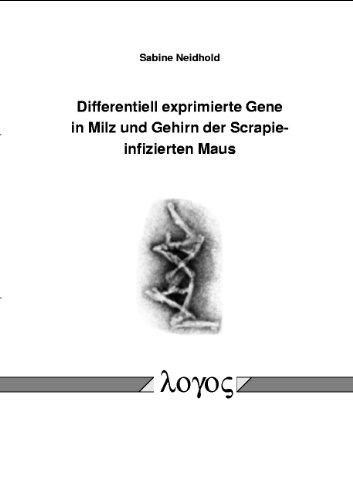 9783832501167: Differentiell exprimierte Gene in Milz und Gehirn der Scrapie-infizierten Maus