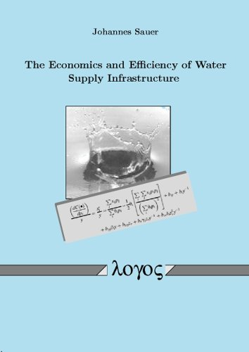 9783832510497: The Economics and Efficiency of Water Supply Infrastructure