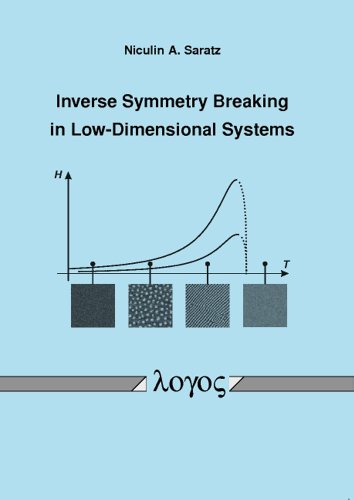 9783832524036: Inverse Symmetry Breaking in Low-Dimensional Systems