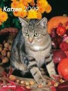 9783832735418: Katzen 2009. Posterkalender