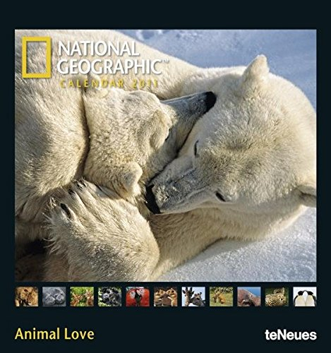 9783832741723: 2011 Ng Animal Love Photo Calendar